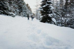 Paar-Shooting im Schnee - Fotograf Köln